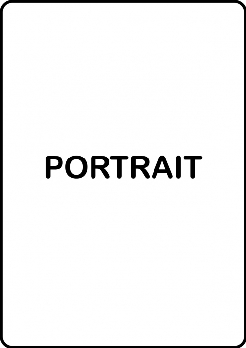 diy-portrait